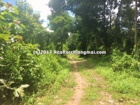 Land for Sale in Mae Kuang, Chiangmai, Thailand.