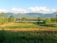 Land for Sale 7 Rai in Fang District, Chiangmai, Thailand.