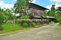 House for rent in Chaiya Sathan, Saraphi Tonpao, Chiangmai, Thailand.