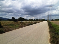 Land for sale in Mae Wang in Chiangmai, Thailand, Good for farm .