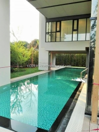 Nice Condominium for rent in Chiangmai, Thailand