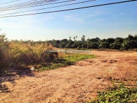 Land For sale 3 Rai Near Ban Tawai,Chiangmai,Thailand.