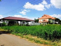 Beautiful Land for sale in Chiangmai, Thailand.