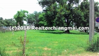 Land for Sale in Chiagmai Thailand