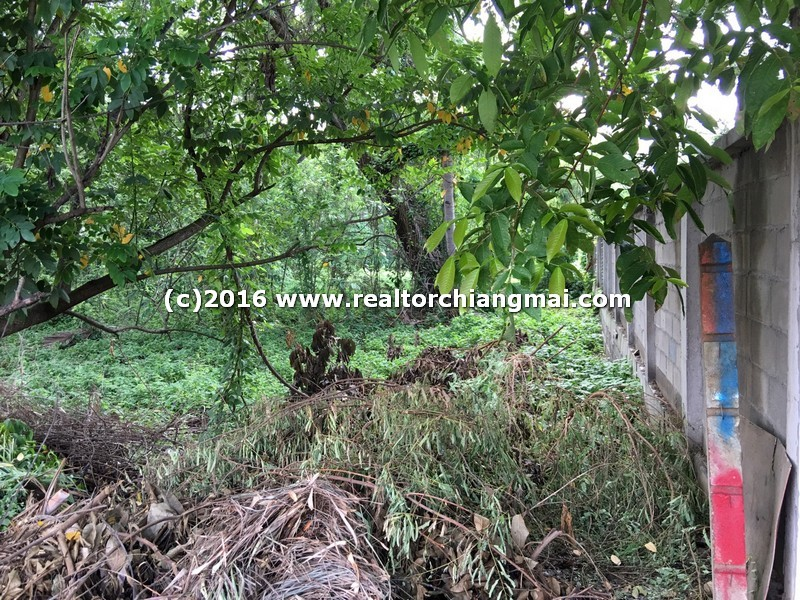 Land for SALE in Chiang Mai, Thailand