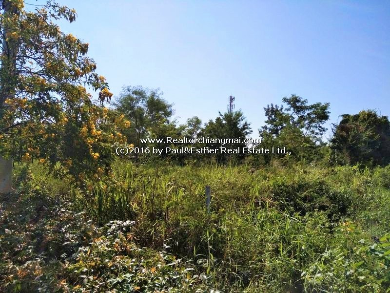Land for sale 3 Rai 1 Ngan 93 Sq.wa in Mae Hia , Chiangmai, Thailand