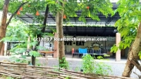 Land with Building for rent Near Chiangmai University, Chiangmai, Thailand.
