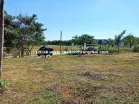 Land for sale with mountain view in Mae Rim, Chiangmai.
