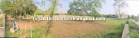 Land for sale 5 Rai 3 Ngan 5 Sq.wa in Mae Rim, Chiangmai