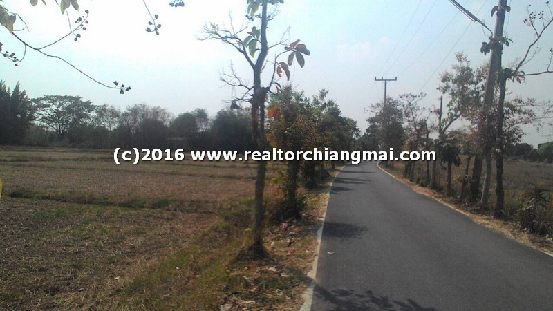 Nice Land for Sale 12 Rai in Doi Saket Chiangmai Thailand
