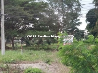 Land for Sale 2 Rai 0 Ngan 97 Sq.wa. Chiangmai, Thailand.