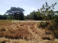 Land for sale on Chiangmai-Sankampeang road (1317),Chiangmai, Thailand