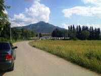 Land for sale in Mea On Chiang Mai, Thailand.