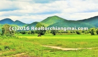 Lot Land for Sale 158 Rai Located in Lamphun Thailand.