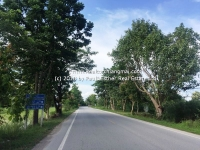 Lot Land for Sale 80 Rai Located in Baan Thi, Lamphun Thailand.