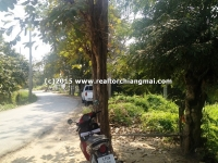 3 Rai 2 Ngan 68 Sq.wa. Land for sale in Khun Khong, Chiangmai, Thailand.