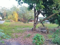 Land for Sale in Saraphee Chiangmai Thailand