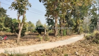 Land for sale 2-3-33 Rai on Canal Road, Hang Dong, Chiangmai, Thailand