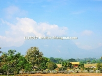 Land for sale in Chiang Dao, Chiangmai, Thailand