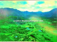 "Land for sale 92 Rai in ""Mae On"" Chiangmai Thailand"