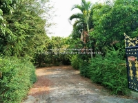 Land for sale with a half wood house in  San Kampaeng, Chiangmai