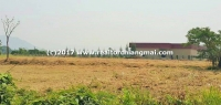 Perfect Land for sale in San Kamphaeng area, Chiang Mai, Thailand