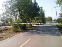 Nice Land 4 Rai for sale in Mae Wang, Chiang Mai, Thailand .
