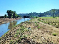 Nice Lot Land Near by River & Mountain  View for sale  in Mea Wang Chiang Mai, Thailand