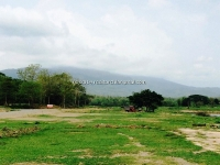 Land for sale in Mae Rim  near PTIS with Mountain view, Chiangmai, Thailand