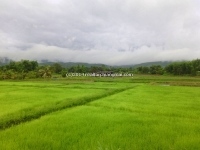 Beautiful land for sale near small river and mountain view in Maetang in Chiang Mai, Thailand .