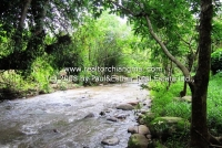 Lot land with River and mountain View for sale Chiangmai, Thailand .