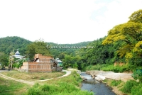 The culture and nature Resort near river& Jungle for Sale in Chiangmai,Thailand.