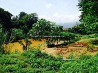 Land for sale nearby river in San Pee Seua, Chiangmai, Thailand.