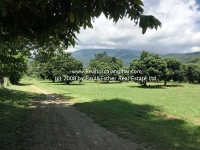 Lot Land 1 Rai  1 Ngan  70 Sq.wa or 2,280 Sq.m with Panorama Mountain view & for SALE  in Chiang Mai