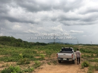 Lot Land for Sale 139 Rai Located in Lamphun Thailand.